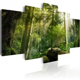 Quadro - The Beauty of the Forest