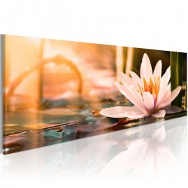 Quadro - Beautiful Lotus