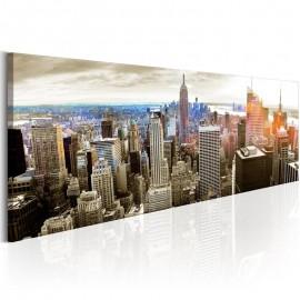 Quadro - Manhattan: Island for Rich
