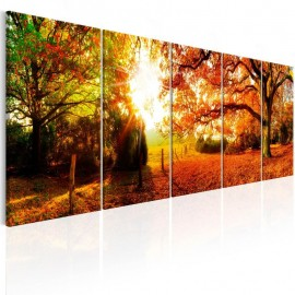 Quadro - Enchanting Autumn