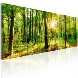 Quadro - Magic Forest