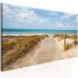Quadro - Windy Beach