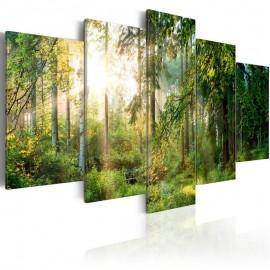 Cuadro - Green Sanctuary