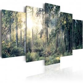 Quadro - Fairytale Landscape