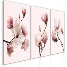 Cuadro - Spring Magnolias (3 Parts)