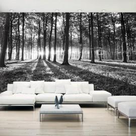 Fotomural autoadhesivo - Grey Wilderness II