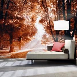 Papel de parede autocolante - Autumn Park