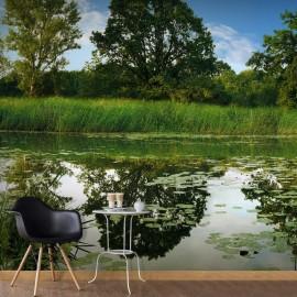 Fotomural autoadhesivo - The Magic Pond III