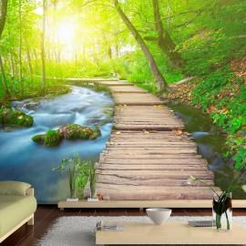 Papel de parede autocolante - Green forest