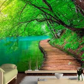 Fotomural autoadhesivo - Green peace