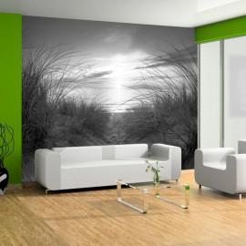 Papel de parede autocolante - beach (black and white)
