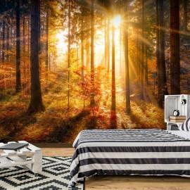 Fotomural autoadhesivo - Despertamiento del otoño