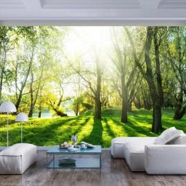 Papel de parede autocolante - Sunny May Day