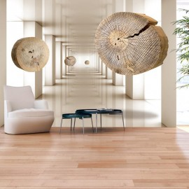 Fotomural - Flying Discs of Wood