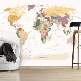 Fotomural - World Map