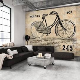 Fotomural - Old School Bicycle