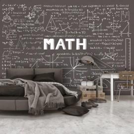 Fotomural - Mathematical Handbook