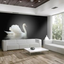 Fotomural - cisne (blanco y negro)