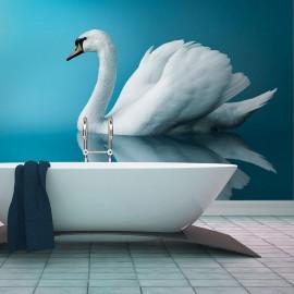 Fotomural - cisne - reflexo