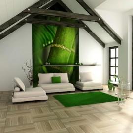 Fotomural - bambú - detalle