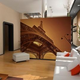 Fotomural - Poder de Paris