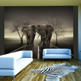 Fotomural - Cidade de elefantes