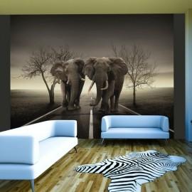 Fotomural - Ciudad de elefantes