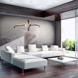 Fotomural - Ballet, poesía sin palabras