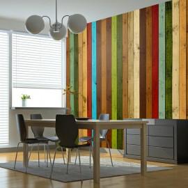 Fotomural - Wooden rainbow