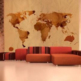 Fotomural - Mapa del té del mundo