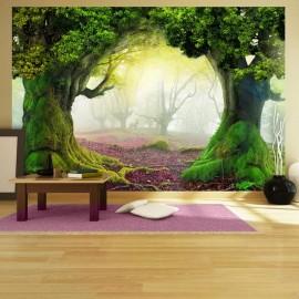 Fotomural - Enchanted forest