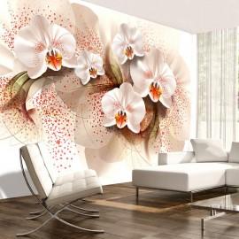 Fotomural - Orquídeas té