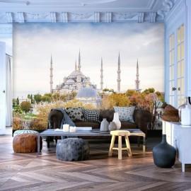 Fotomural - Hagia Sophia - Istanbul