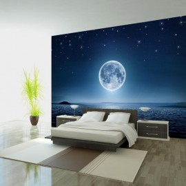 Fotomural - Moonlit night