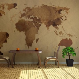Fotomural - Mapa del mundo- té