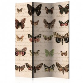 Biombo - Retro Style: Butterflies [Room Dividers]