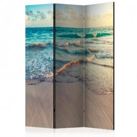 Biombo - Beach in Punta Cana [Room Dividers]