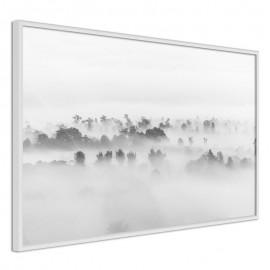 Pôster - Fog Over the Forest