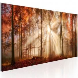 Quadro - Autumnal Dawn