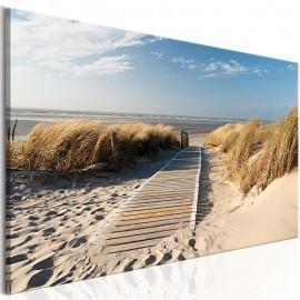 Cuadro - Playa salvaje