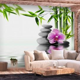 Fotomural autoadhesivo - Water Garden