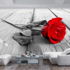 Papel de parede autocolante - Abandoned Rose