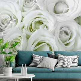 Fotomural autoadhesivo - Satin Rose (Green)