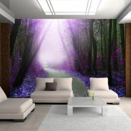 Papel de parede autocolante - Purple path