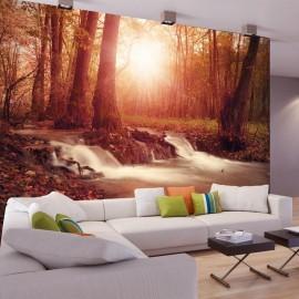 Papel de parede autocolante - Autumn Dreaminess