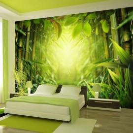 Papel de parede autocolante - Forest fairy