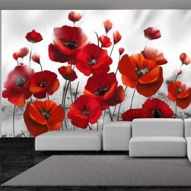 Papel de parede autocolante - Poppies in the Moonlight