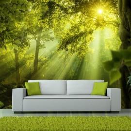 Papel de parede autocolante - In a Secret Forest