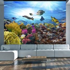 Papel de parede autocolante - Coral reef