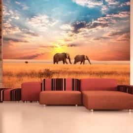 Fotomural - Elefantes africanos en sabana